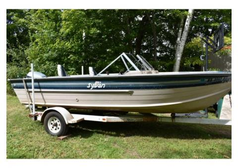 24ft weeres 1970 pontoon boat for sale in Battle Lake, Otter