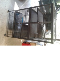 Ferret cage plus litter boxes and carry cases